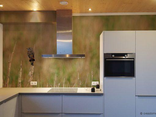 Fotobehang Blauwborst keuken