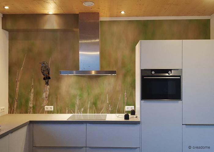 fotobehang blauwborst in keuken