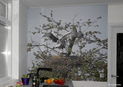 Fotobehang ooievaar voor in keuken