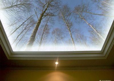 Voorbeelden fotobehang tegen plafond